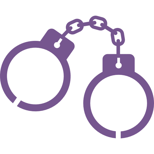 Disorderly & Resisting Arrest Offenses